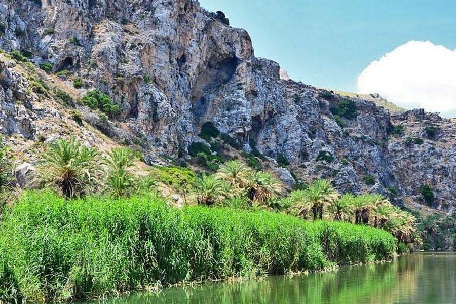 Όταν το χιόνι μεταμόρφωσε το φοινικόδασος της Πρέβελης στην Κρήτη