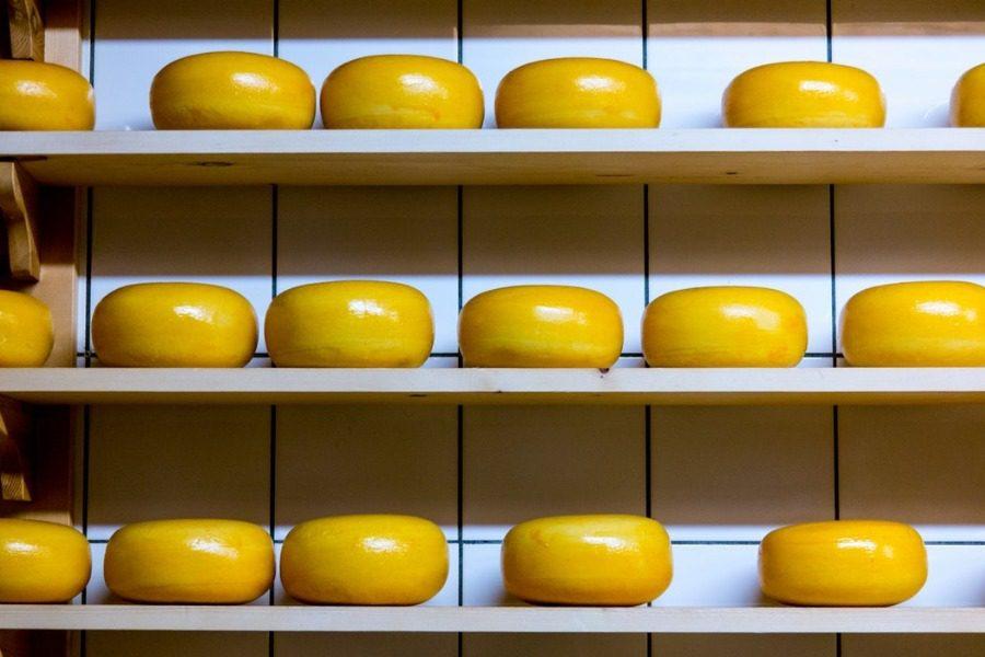 Τα πιο ακριβά τυριά του κόσμου