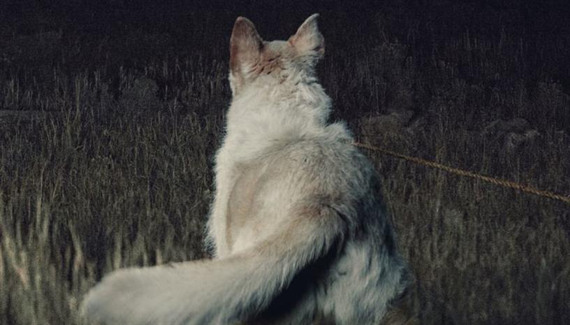 «Έρχεται τη Νύχτα» ‑ Το κατάλληλο ψυχολογικό θρίλερ για τους λάτρεις του είδους